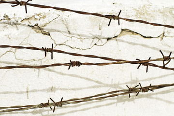 Barbed Wall