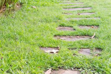 stone walkway in green grass field backyard