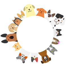 dogs and cats circle