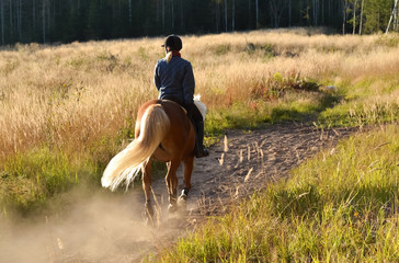 Woman horseback riding on country road in the sunset