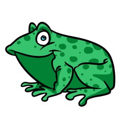 Green Frog cartoon illustration isolated image animal character