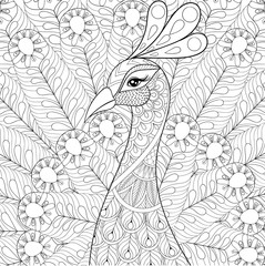 Peacock with feathers in zentangle style. Freehand sketch for ad