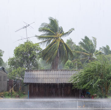 Home wooden in rural and gust wind storm raining