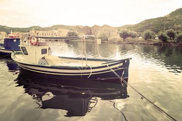 boat moored in Temo river