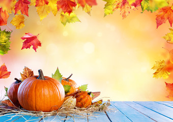 Thanksgiving Background - Pumpkins On Wooden Plank And Falling Leaves