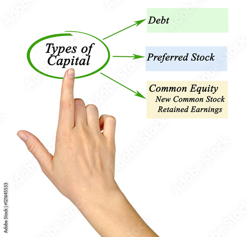 preferred stock and common stock