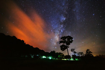 Silhouette of Tree and Milky Way with cloud at Phu Hin Rong Kla