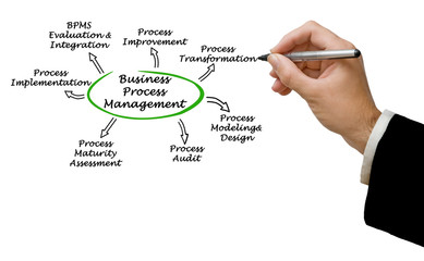 Wall Mural - Business Process Management