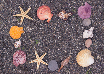 Seashells on small coast pebbles, frame with copy space. Travel background.