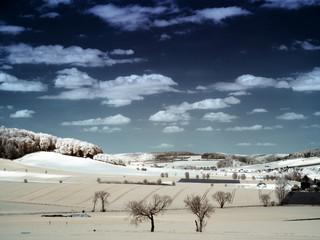 Infrarot- Infrared Foto einer Landschaft.  Harzlandschaft in Infrarot