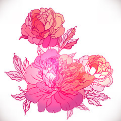 Vintage hand-drawing background with flowers.