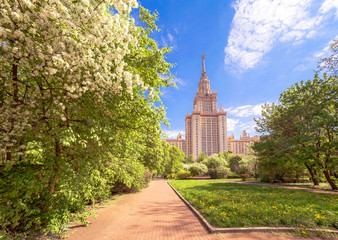 Wide angle view of sunny campus of Moscow university with yellow dandelions and white blossoming apple trees under blue cloudy sky