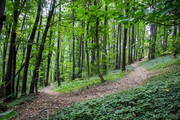 Planinski put Bukulja, Serbia