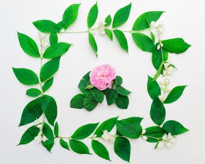 Wreath of pink tea rose and jasmine flowers