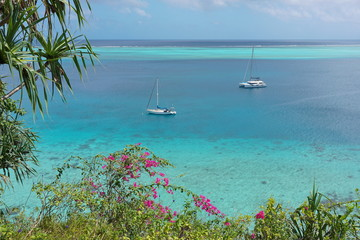 Sailboat anchored in blue water of a lagoon with tropical vegetation in foreground, south Pacific ocean, Huahine island, French Polynesia