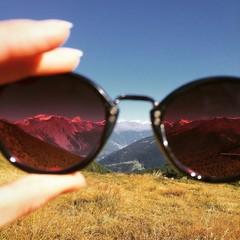 monti occhiali