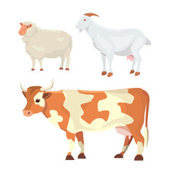 milk animals isolated set