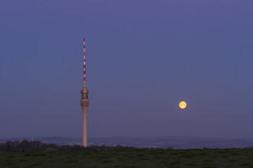 Dresden Monduntergang am Morgen