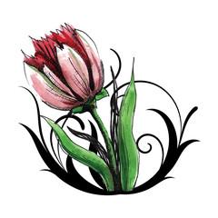 beautiful red tulip with swirls