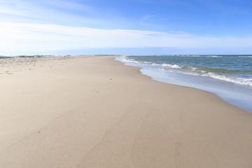 Empty beach North Sea, Baltic Sea, Skagen/Grenen Denmark. Empty sandy beach, no footprints