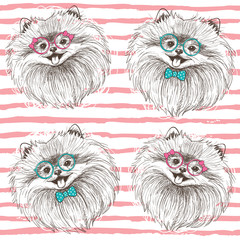 Fashionable seamless vector pattern with hand drawn happy pomeranians boy and girl