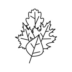 Leaves icon in outline style isolated on white background. Plant symbol vector illustration
