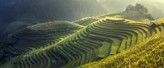 Poster Rice fields Beautiful rice terraces Mu cang chai,Yenbai,Vietnam.The symbol