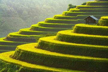 Papiers peints Les champs de riz Rice terrace Mu Cang Chai Vietnam