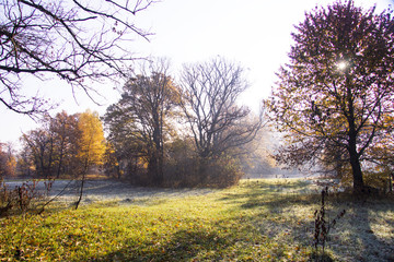 Colorful autumn sunrise. First frost at November