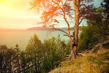 Mountain lake in autumn at sunset. Norway