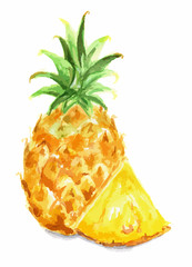 Isolated watercolor pineapple on white background. Fresh exotic fruit with vitamins and sour taste.