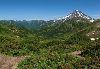 Panoramic view on the valley at the foot of Mutnovsky Volcano, Kamchatka, Russia