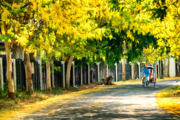 Vintage thai tricycle in thailand