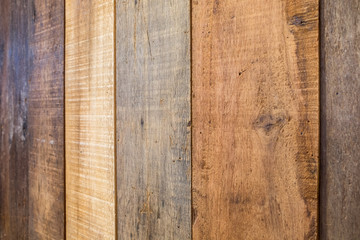 Wood plank colorful vertical tilt background