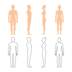 Male and female human vector silhouettes