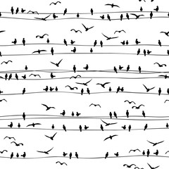 Seamless pattern of birds sitting on electrical wires