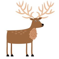 Beautiful brown deer antlered