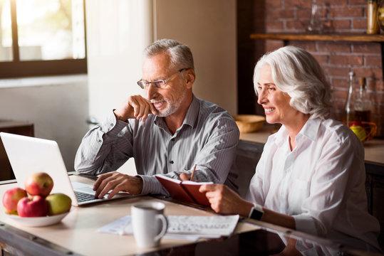 Happy senior couple using laptop at the kitchen