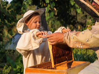little boy beekeeper works on an apiary at hive