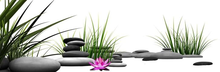 Obraz Trawa i kamienie z różową lilią wodną  - fototapety do salonu