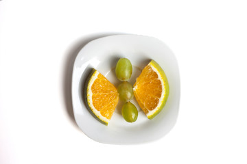 Food art creative concepts. Funny animal made of fruit such as mandarin orange. Cute dessert for children. Fruit isolated on a white background.