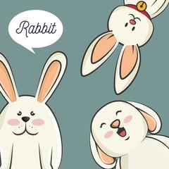 cute rabbits animal. bunny cartoon. colorful design. vector illustration