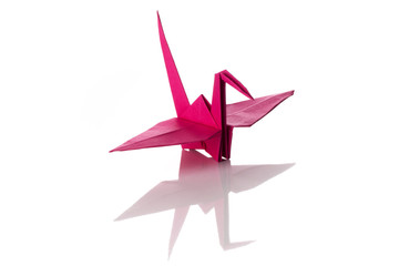 Origami art, colored crane isolated over a white background