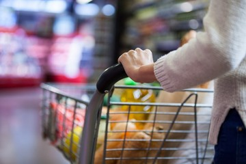 Woman holding groceries in shopping cart