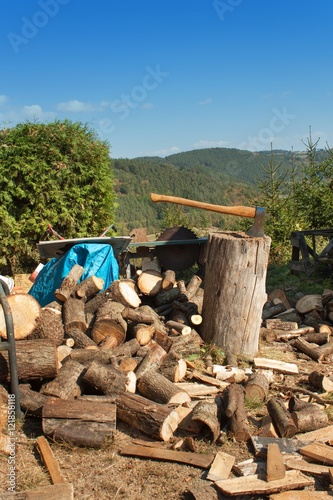 Quot old ax on log and firewood axe cut into wood after