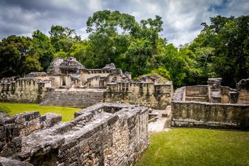 Mayan Acropolis at Tikal National Park - Guatemala