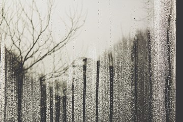 View Through Window In Rainy Day