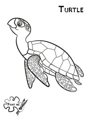 Children's coloring book that says Paint me. Sea life. Turtle