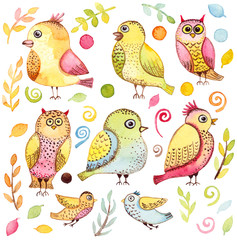 Set with Watercolor Funny Birds, Leaves and Elements