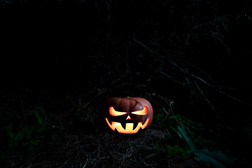 Halloween Scary Pumpkin in the forest in the dark with glowing e